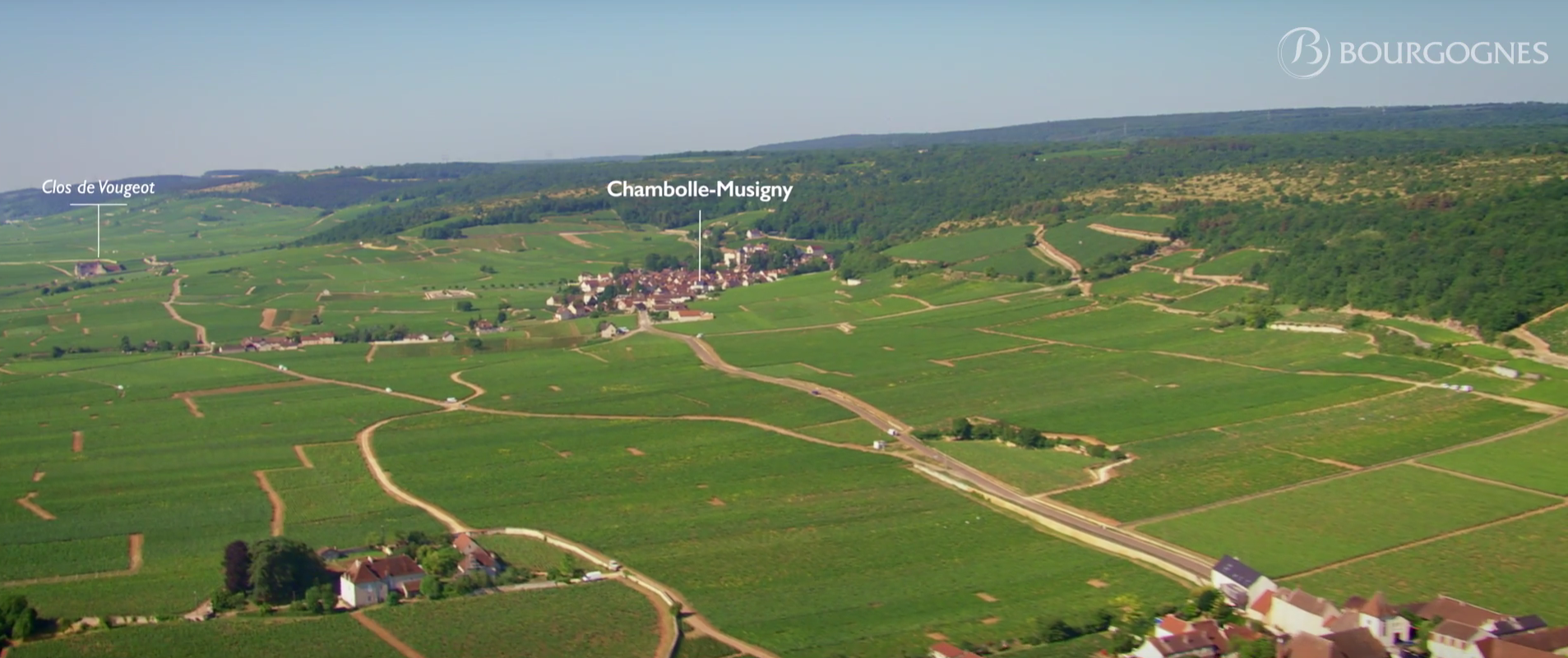 burgundy aerial shoot